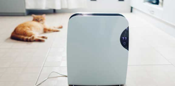 Why Should You Buy An Air Purifier For Kitchen Smells