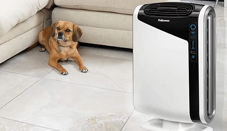 Why Should You Buy An Air Purifier To Remove Odors