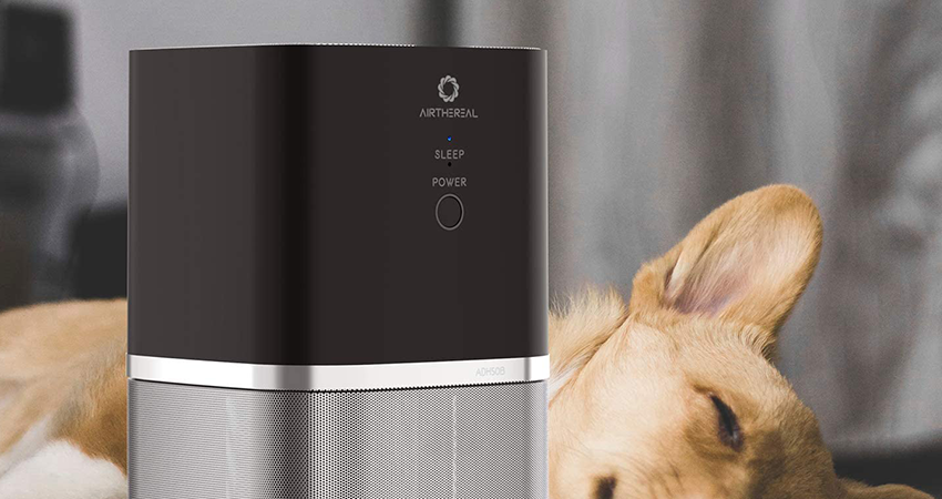 best-air-purifier-for-smells