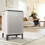 How Long Does it Take for Air Purifier To Work