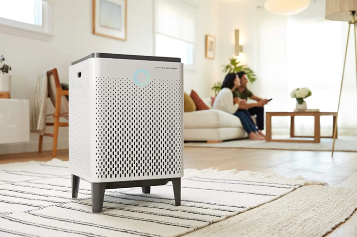 How Long Does it Take for Air Purifier To Work? 1