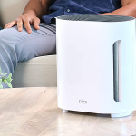 The 8 Best Air Purifier for Cat Litter Odor Reviews in 2021 2