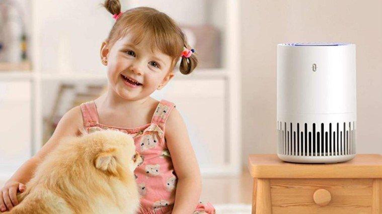 Eliminate Air-Borne Allergies
